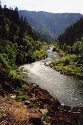 Rogue River View 1